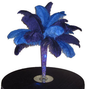 Ostrich Feather Centerpiece