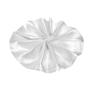 Satin Cloth Napkins